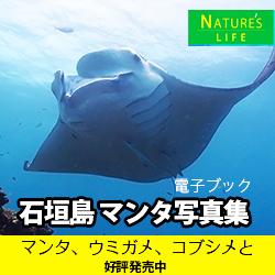 石垣島 マンタ写真集 奇跡の海